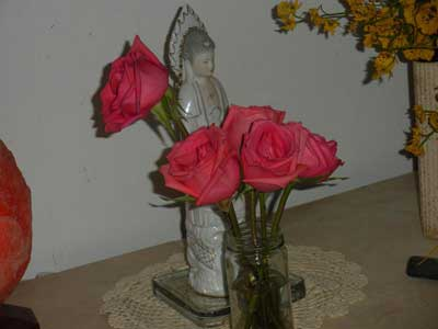 scalar wave laser, roses